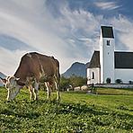 Verkäufer Innenwirtschaft (m/w/d) mit Schwerpunkt konventionelle Melktechnik und EDER Futterband im Gebiet Oberbayern